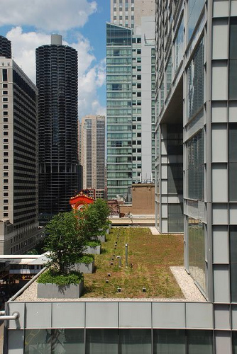 Joffrey green roof